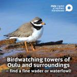 Birdwatching towers of Oulu and surroundings -brochure