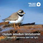Oulun seudun lintutornit - esite